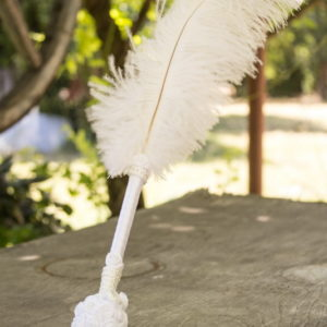 церемония, химикал, перо, поставка , сватбен, подписване